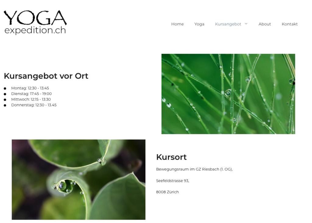 "Screenshot of ""Yogaexpedition.ch"", category ""Kursangebot"""